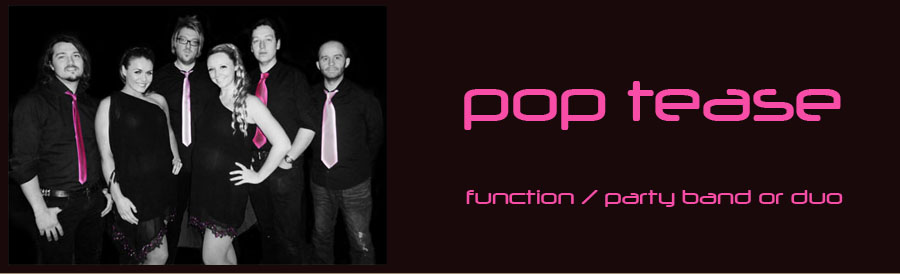 function band party band pop tease wedding band